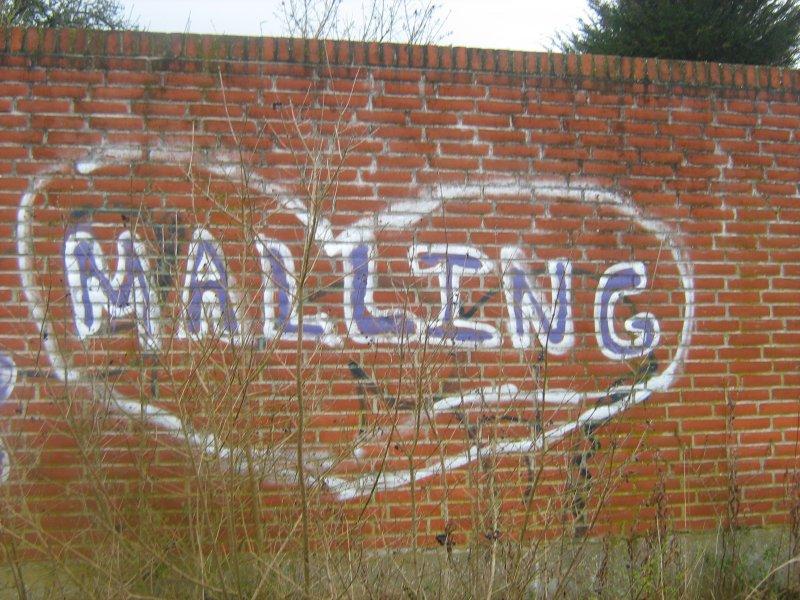 Malling Skole 7.a elevbilleder vandring